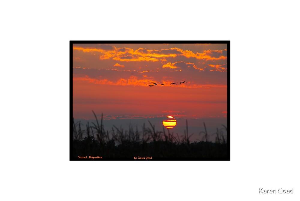Sunset Migration by Karen Goad
