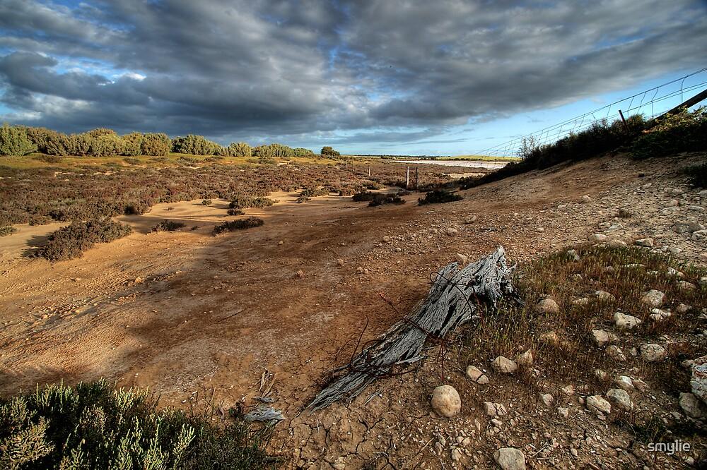 Salt Bush Country by smylie