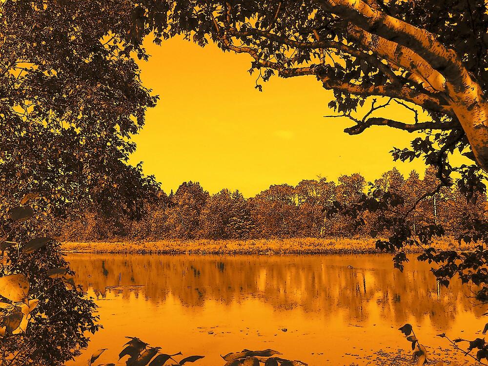 River Landscape by Gene Cyr