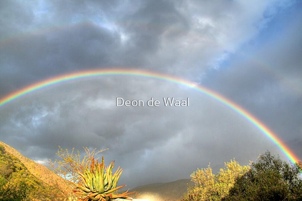 Rainbow by Deon de Waal
