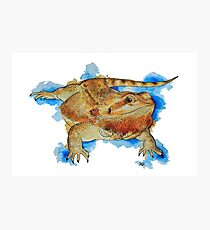 Watercolor Bearded Dragon Photographic Print