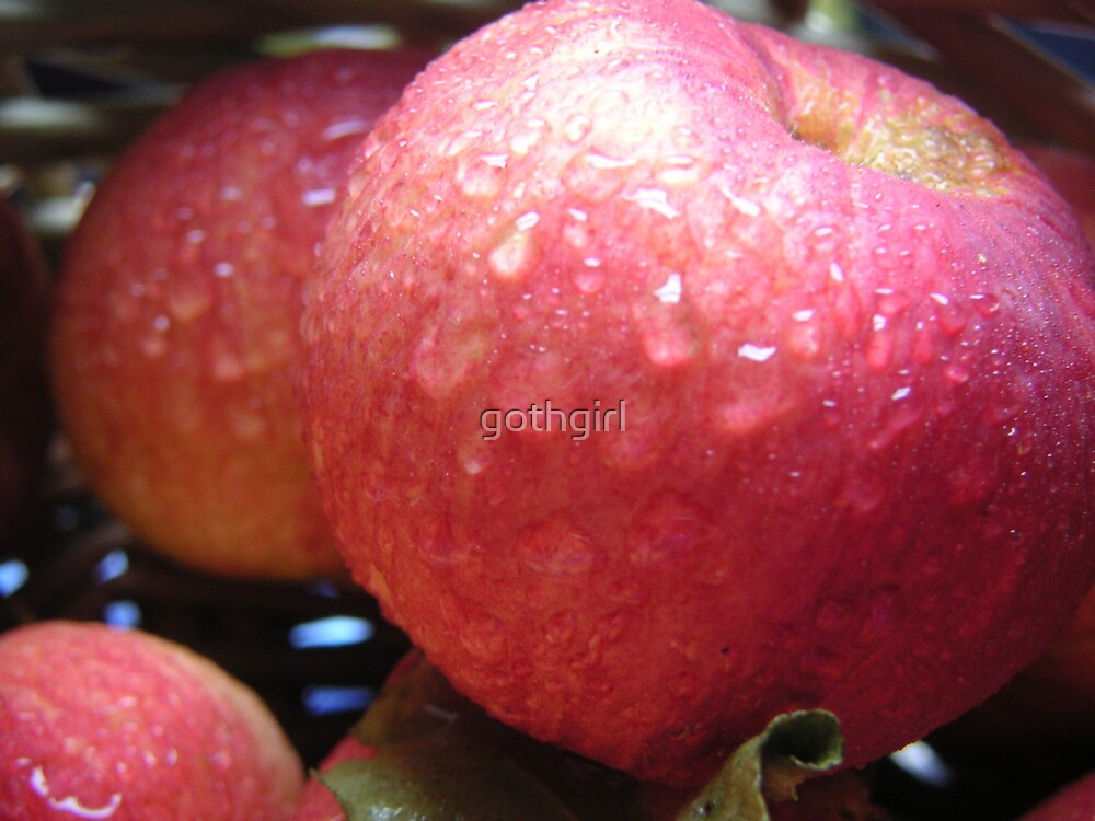 autum red apples by gothgirl