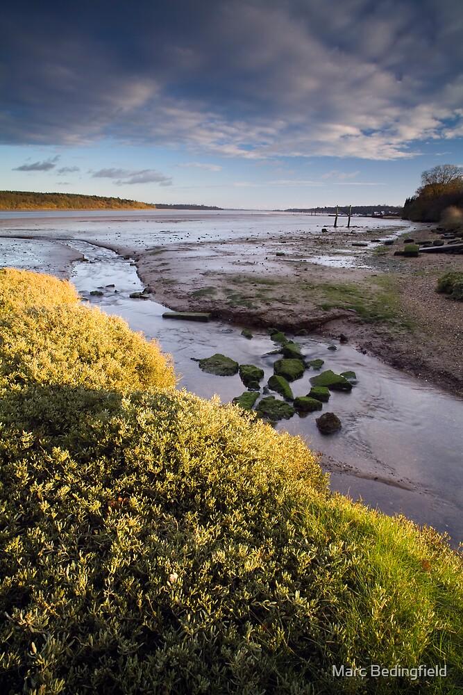 Orwell Estuary by Marc Bedingfield