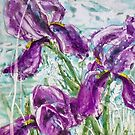 Irises by Jenny Cairns