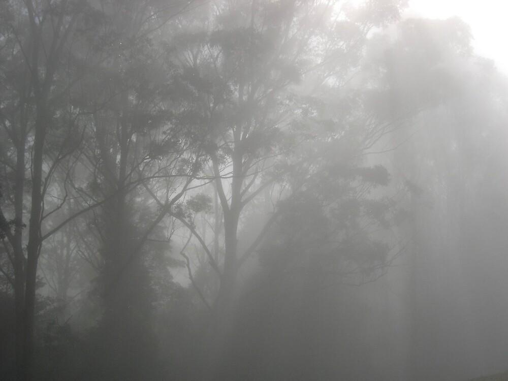 Mist 2 by drarnott