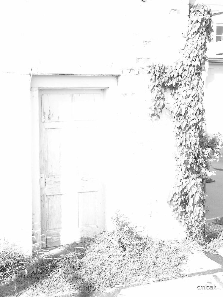 Over-exposed door by cmisak