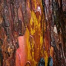 Painted Trunk of a Yew Tree by Marilyn Harris