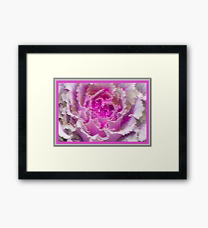 Pretty Pink Soft and Wet Framed Print