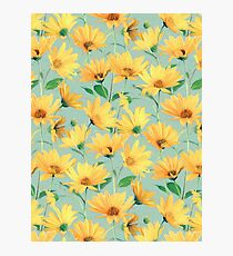Painted Golden Yellow Daisies on soft sage green Photographic Print