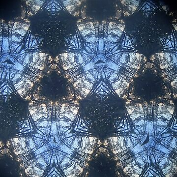Thru A Kaleidoscope Lens n ° 1 by edend