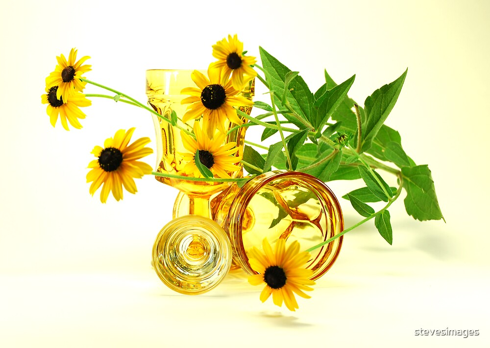 flower and glass still life by stevesimages