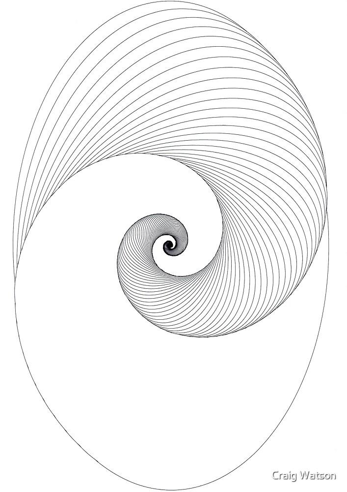 Half Oval Spiral Lines by Craig Watson