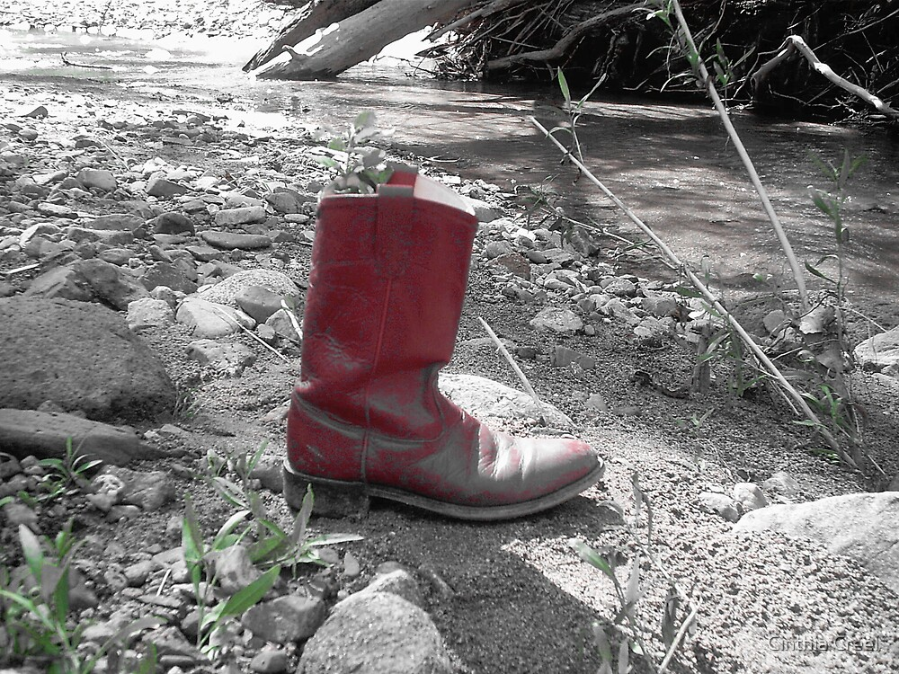 The Red Boot by Cinthia Creel