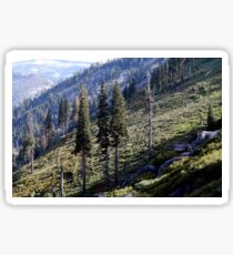 Open Hillside Sticker