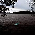 Last Boat on Newfound by Wayne King