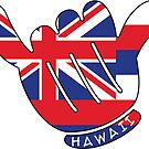 HAWAII SHAKA HANG LOOSE FLAG SURF SURFING HIPPIE PEACE by MyHandmadeSigns