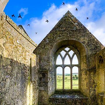 Magical Irish Ruins - Sacred Ireland in Rural County Galway by marksda1