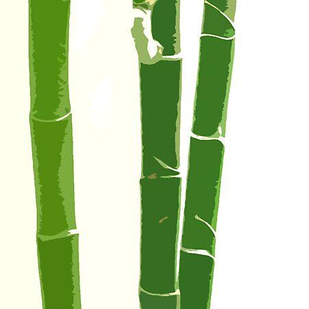 Bamboo Beauty by LindaLou1952