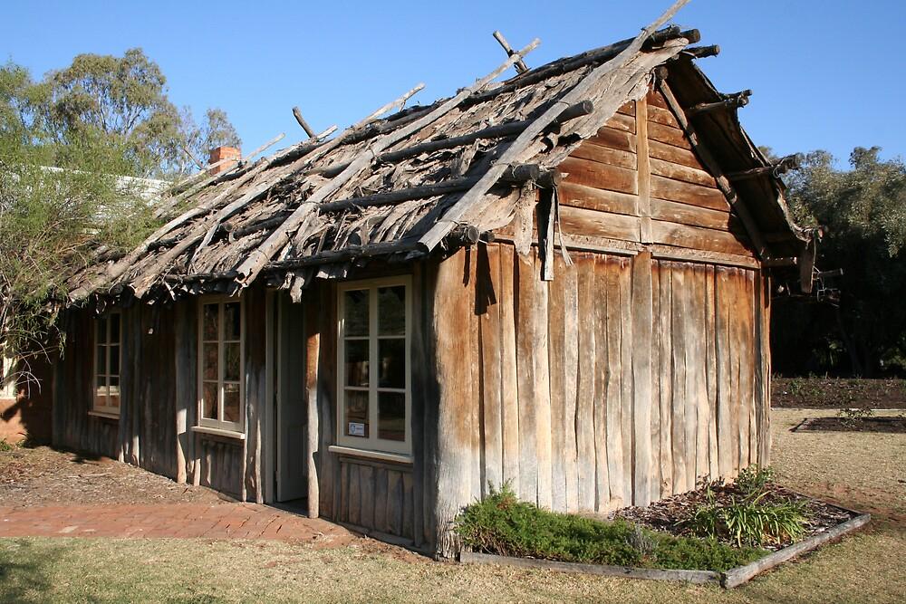 homestead by sherryn pitt
