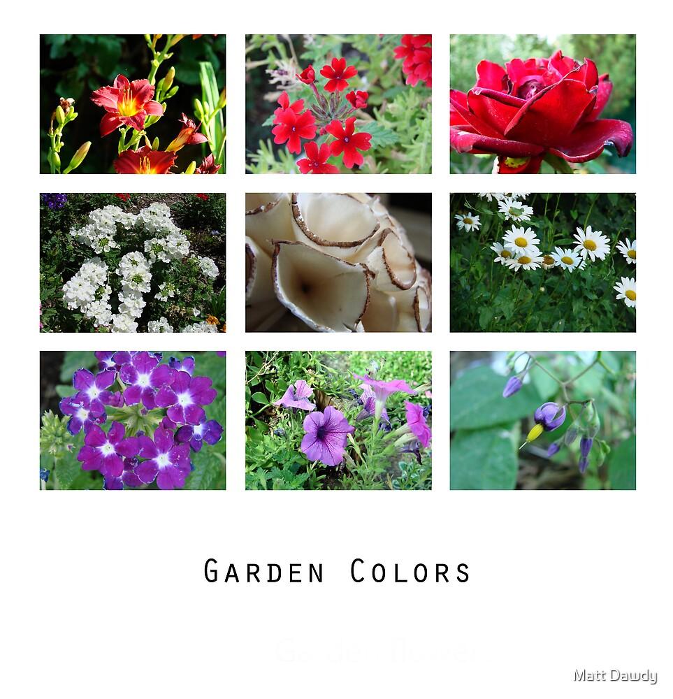 Garden Colors by Matt Dawdy