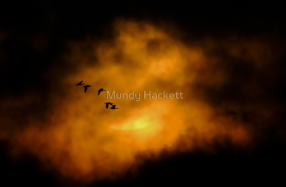 Into the fire by Mundy Hackett