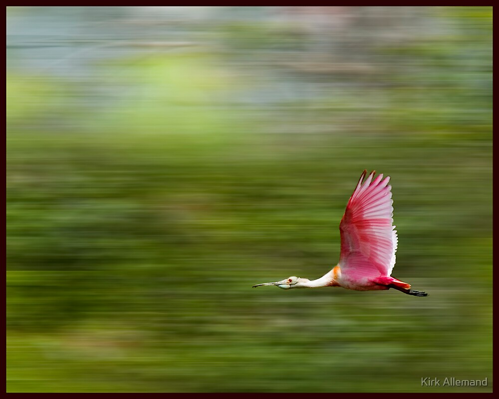 In A Hurry by Kirk Allemand