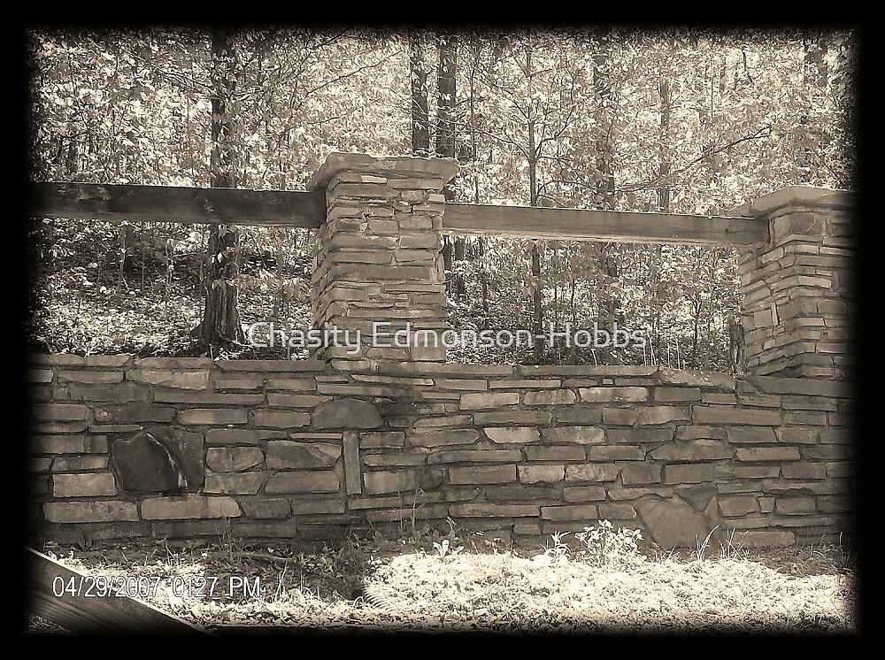 Stone Wall by Chasity Edmonson-Hobbs