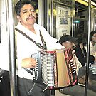 MARIACHI ON THE DYRE AVE EXPRESS  by WhiteDove Studio kj gordon