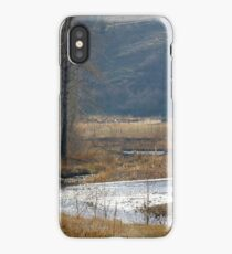 Early Spring at Catherine Creek iPhone Case