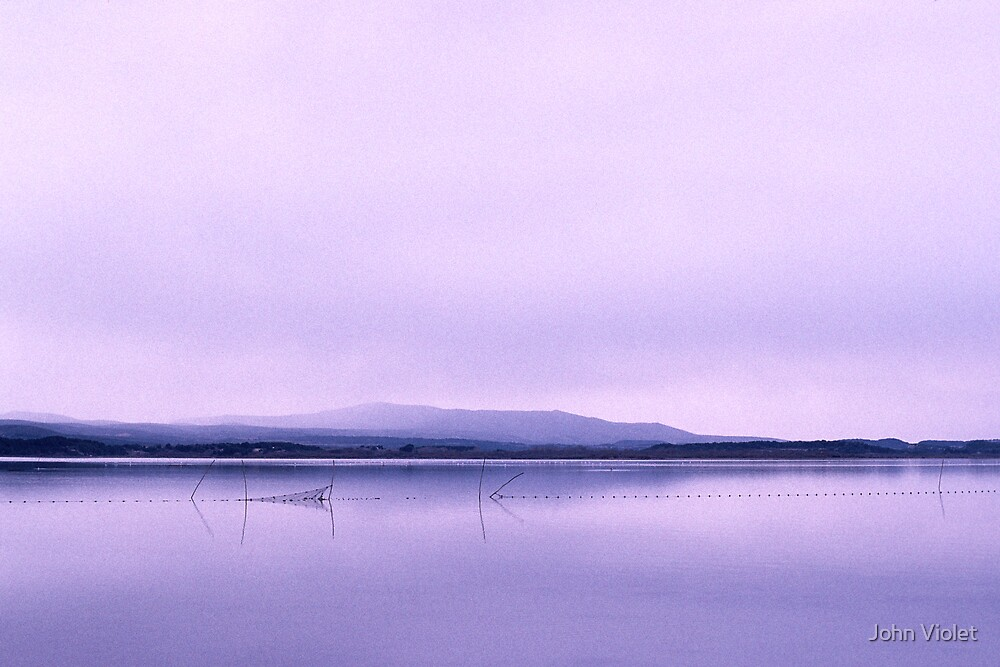 Estuary by John Violet