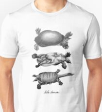 John Laurens Turtle Sketches T-Shirt