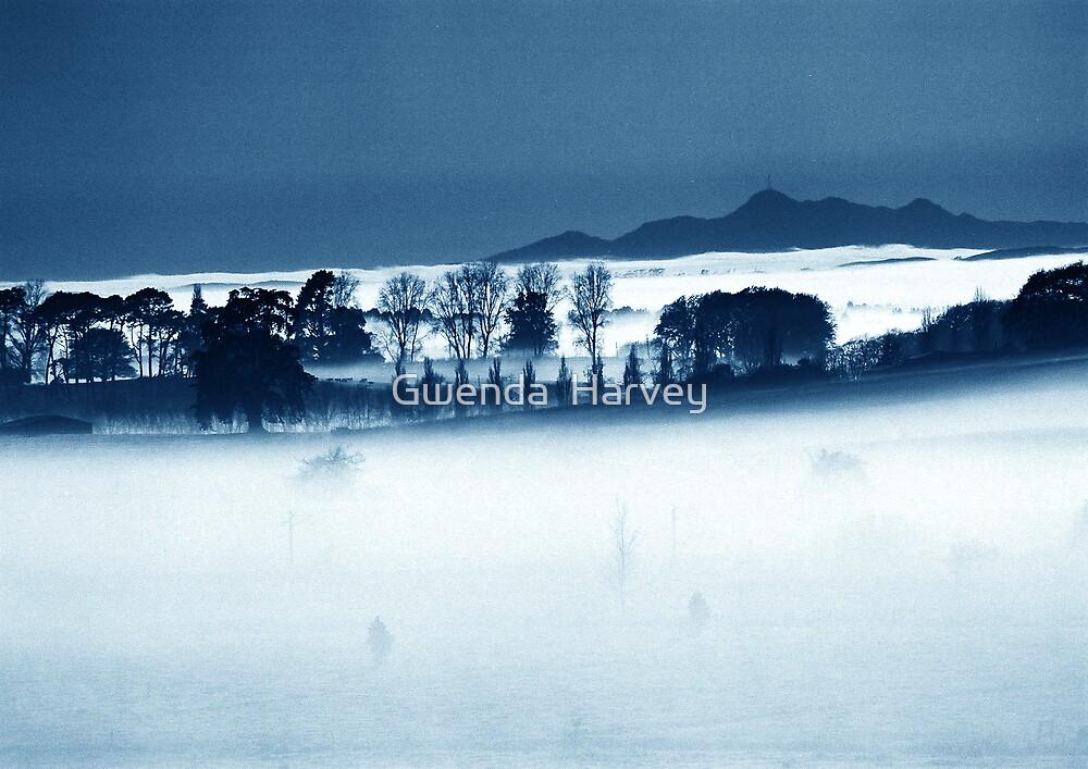 Ohaupo Winter 3  by Gwenda  Harvey