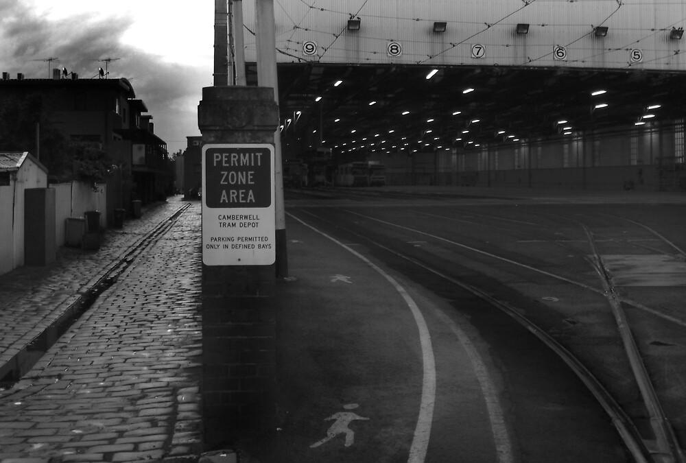 The Depot by Bruce  Watson