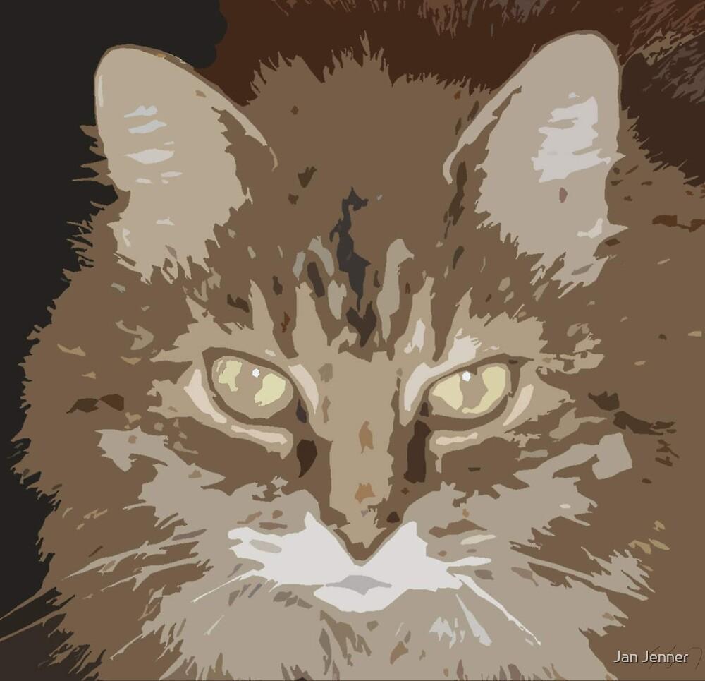 Mean Cat by Jan Jenner