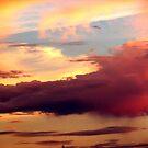 Soft Sky by Trace Lowe