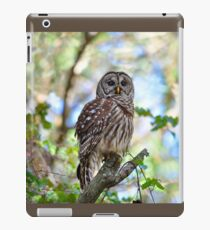 Barred Owl iPad Case/Skin