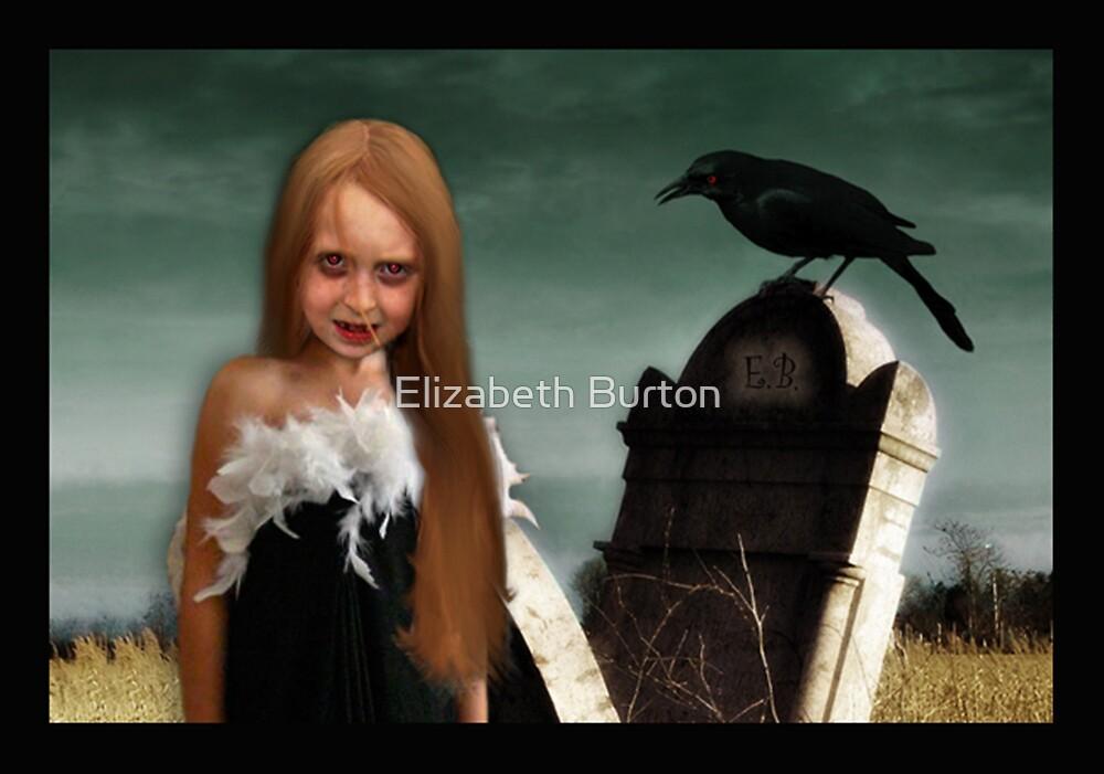 Once Upon A Raven by Elizabeth Burton