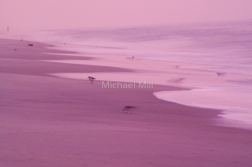Sandpipers on the Beach by Michael Mill