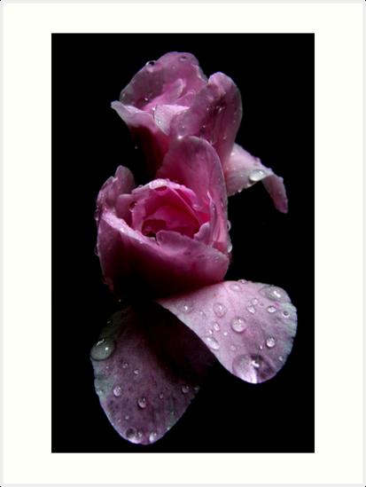 Pink and Wet by Ben de Putron