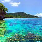 Vanuatu Island Paradise by Adam Gormley