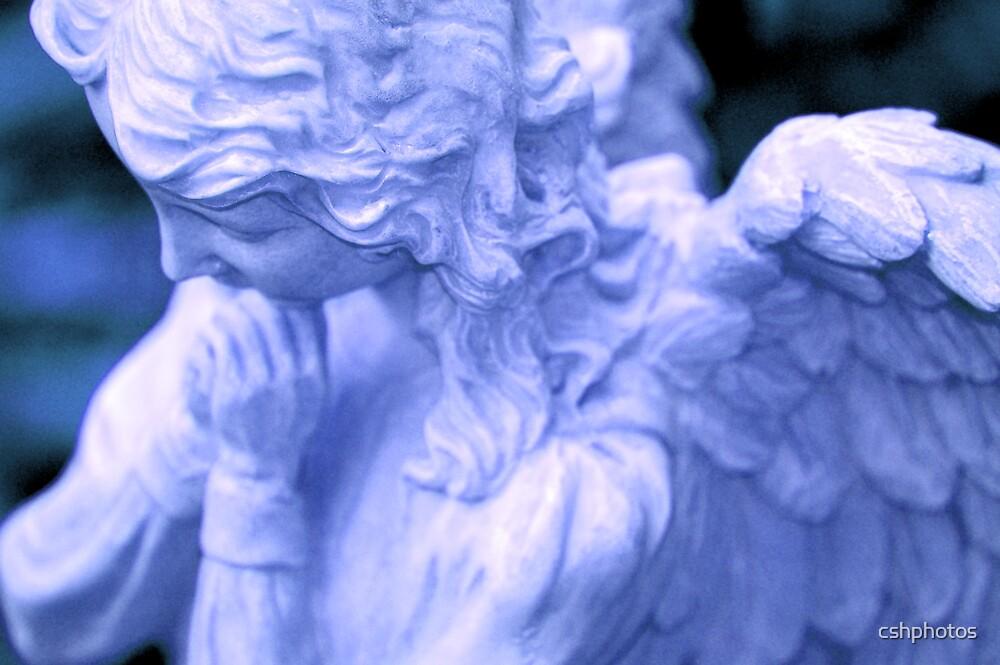 Blue Angel by cshphotos