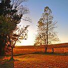 Ballan Sunrise by fabreplus