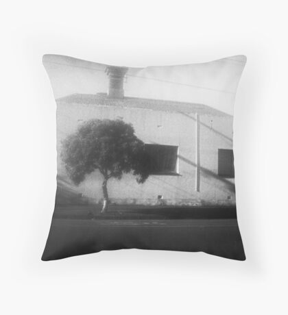 Rough House Throw Pillow
