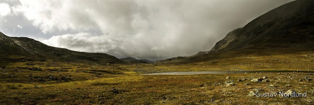 Looking West by Gustav Nordlund