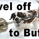 Shovel Off to Buffalo by EyeMagined