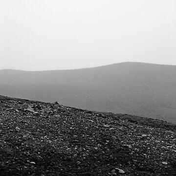 Fog by Bolti