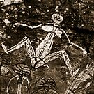 aboriginal rock art by Tom  Cockrem