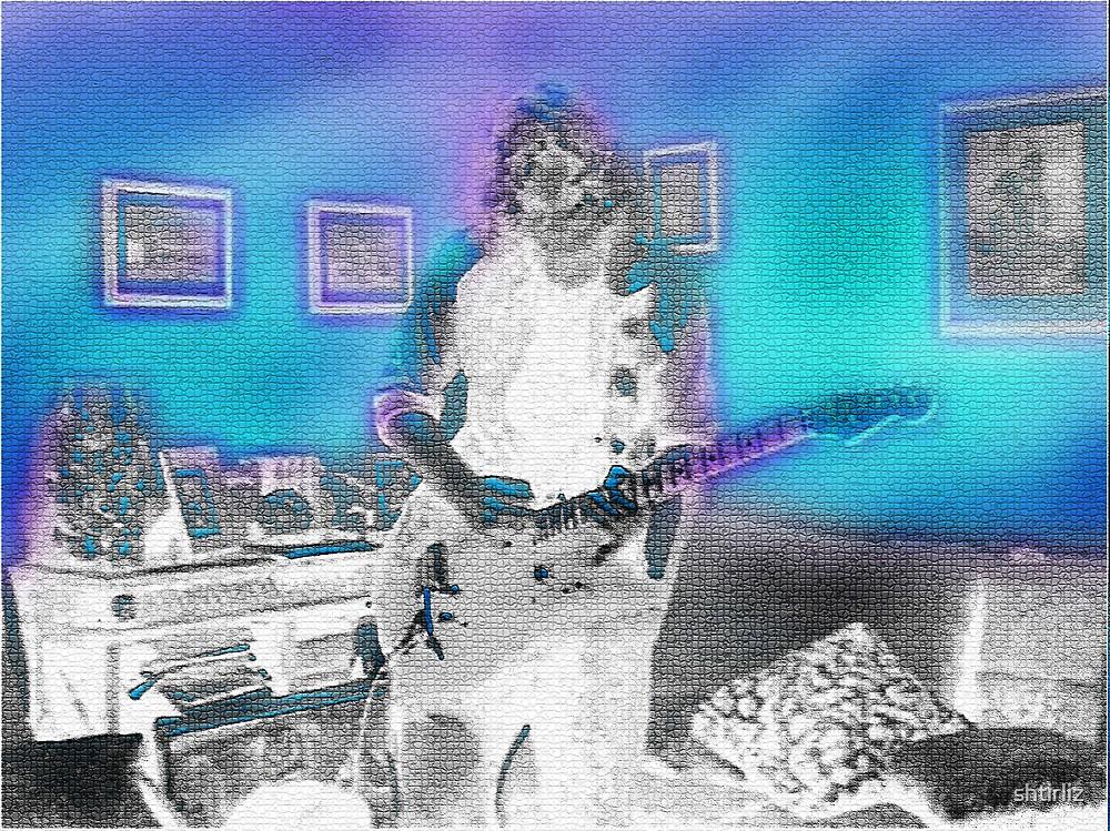 The Room full of Music by shtirliz