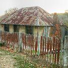 Beyer's Cottage - Hill End NSW Australia  by Michael Matthews