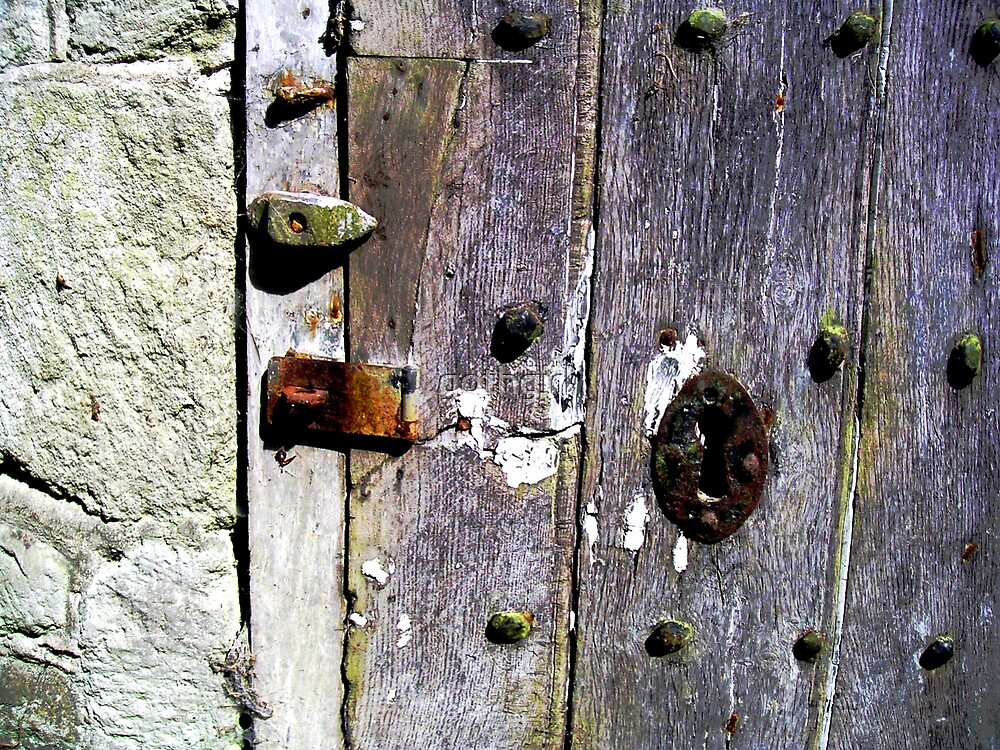 Old Wooden Door by gothgirl